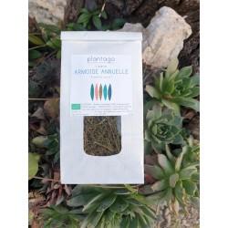 Artemisia annua - sommités fleuries